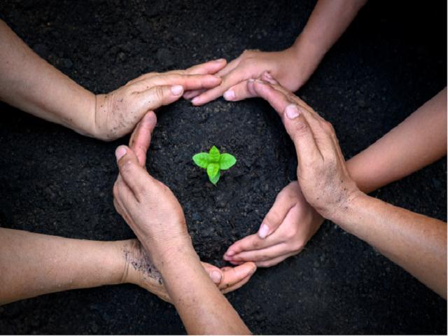 """International King Bhumibol World Soil Day Award"" -Acquisition of ICAR"