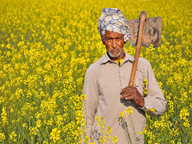PM Kisan - Govt scheme for farmers
