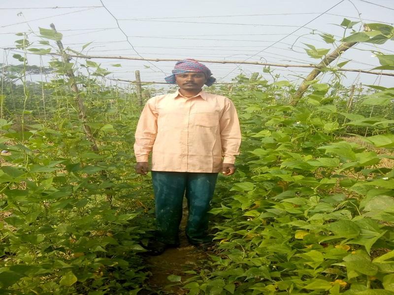 Successful farmer Biswajit Gharami