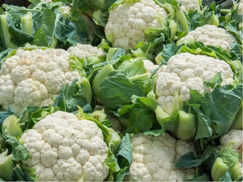 Cauliflower (Image Credit - Google)