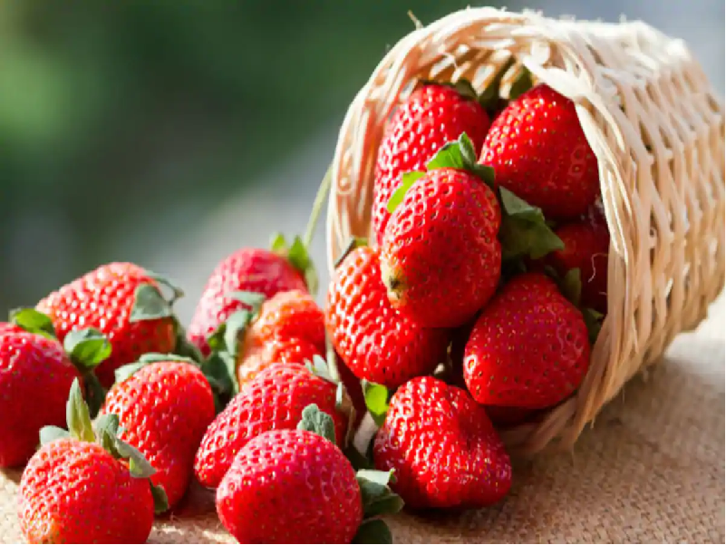 Strawberry - rich in taste with good nutrition value (Image Credit - Google)
