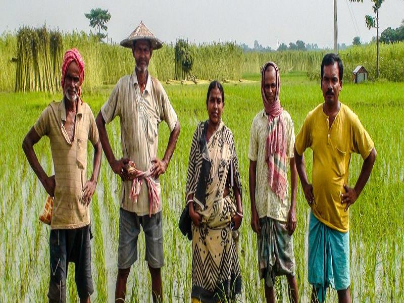 Profitable Crop Production System (Image Credit - Google)