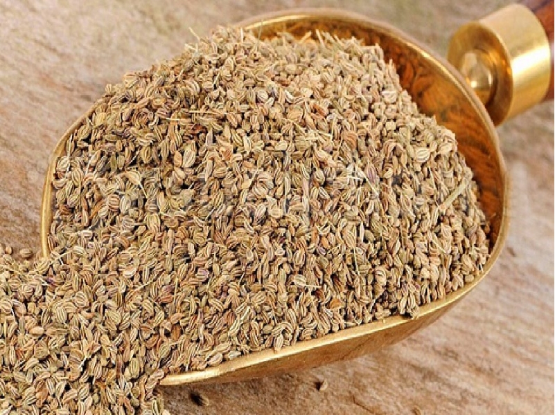 জানুন পেটের নানা সমস্যায় দৈনিক জোয়ান খাওয়ার উপকারিতা (Carom Seeds Health Benefits)