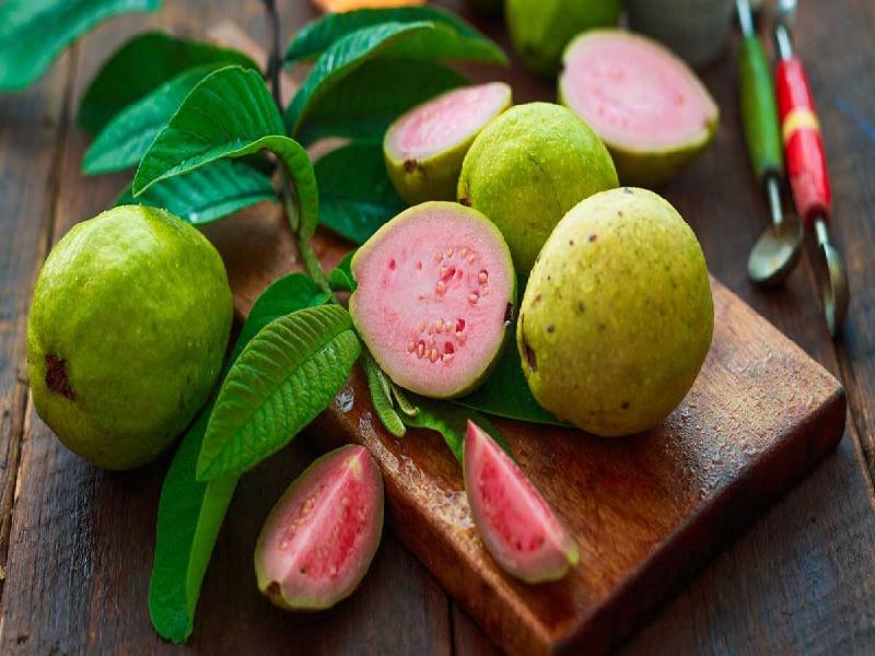 পুষ্টিগুণে ভরপুর পেয়ারার স্বাস্থ্য গুণ (Nutritious Guava)