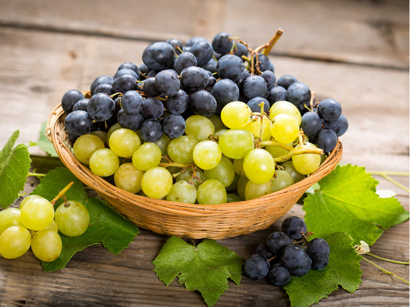 অতিরিক্ত আঙুর খাওয়া স্বাস্থ্যের পক্ষে ক্ষতিকর কেন? কি বলছেন বিজ্ঞানীরা? (Extra Grapes May Harm Your Body)