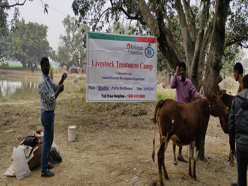 Animal Health Camp (Image Source) - Reliance Foundation