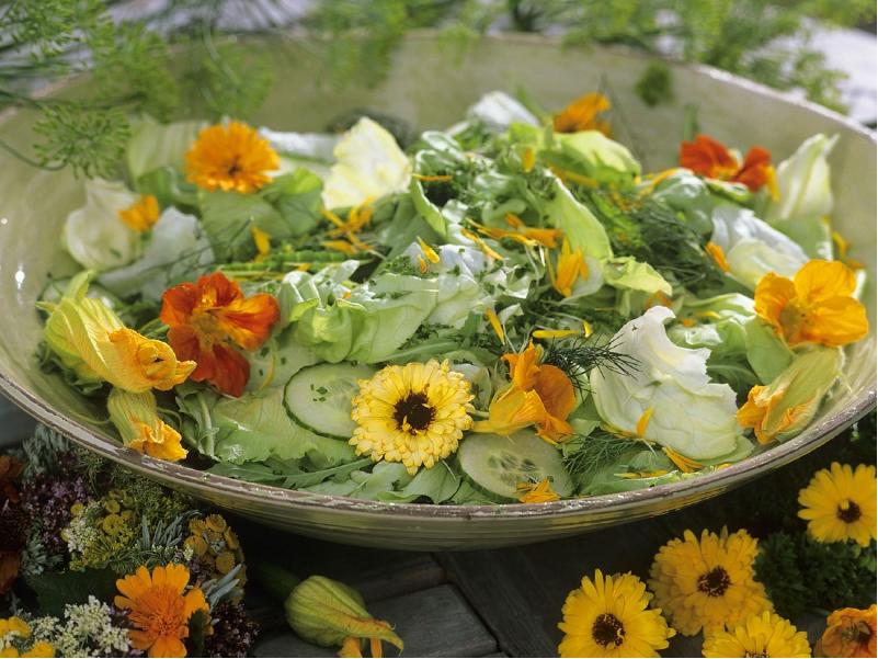 কোন ফুল আপনার বাড়ির জন্য শুভ জানেন কি (Suitable Flowers For Home)