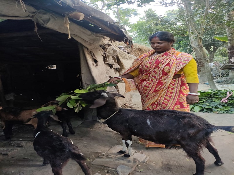Successful Women farmer - Purnima Santra