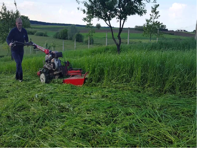 Brush Cutter (Image Source - Google)