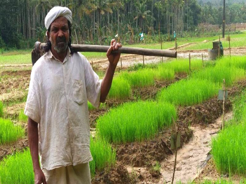 West Bengal Farmer