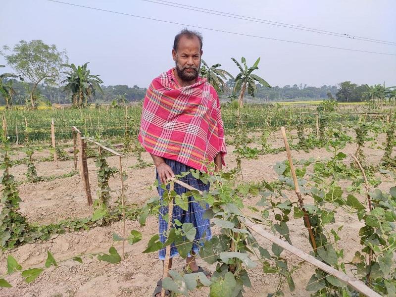 রিলায়েন্স ফাউন্ডেশন -এর পরিষেবায় পটল -এর ক্ষেত বাঁচালো কৃষকভাই আলাউদ্দিন (Farmer Alauddin Get Success THROUGH Reliance Foundation)