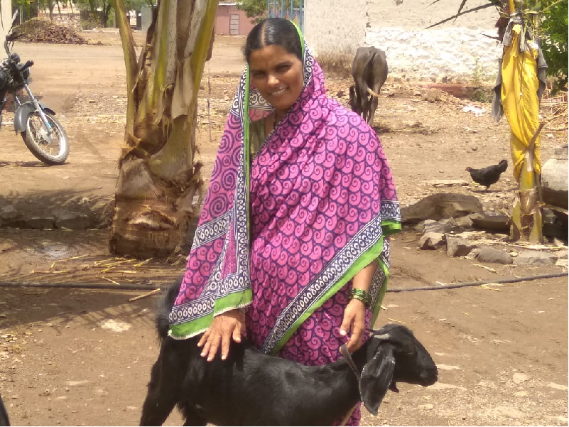 গ্রামের এই মহিলা কৃষক ছাগল পালনে আয় করছেন লক্ষ টাকা (Woman Farmer/ Goat Farming Success Story)