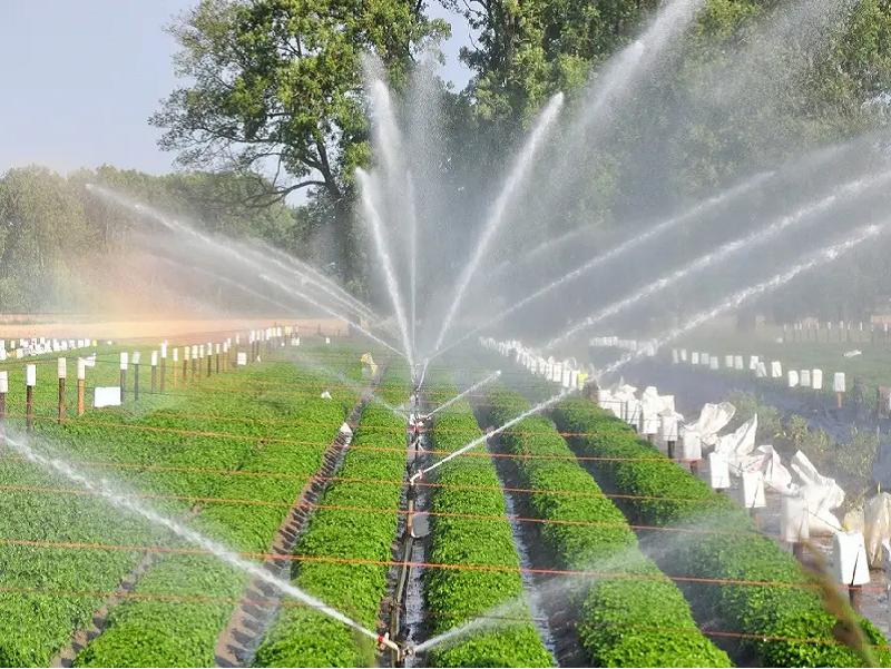 PMKSY - Drip & Sprinkler Irrigation (Image Credit - Google)