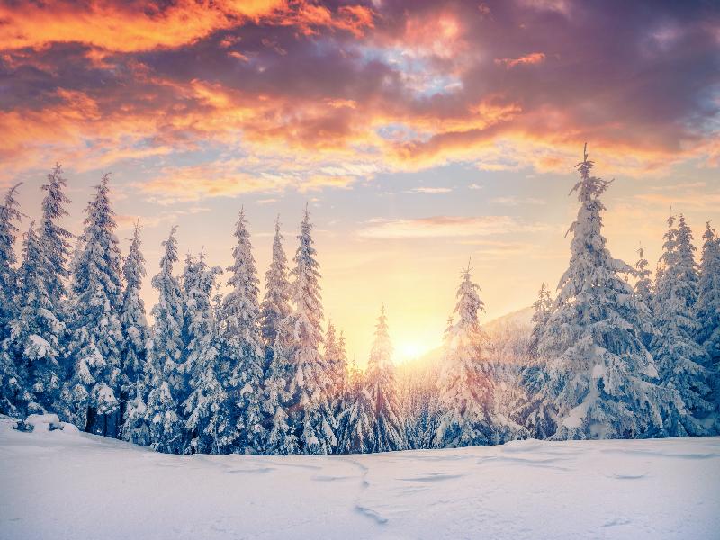 কেমন থাকবে আগামী ২৪ ঘণ্টায় তাপমাত্রা, দেখে নিন একনজরে (Tomorrow's Weather Update)