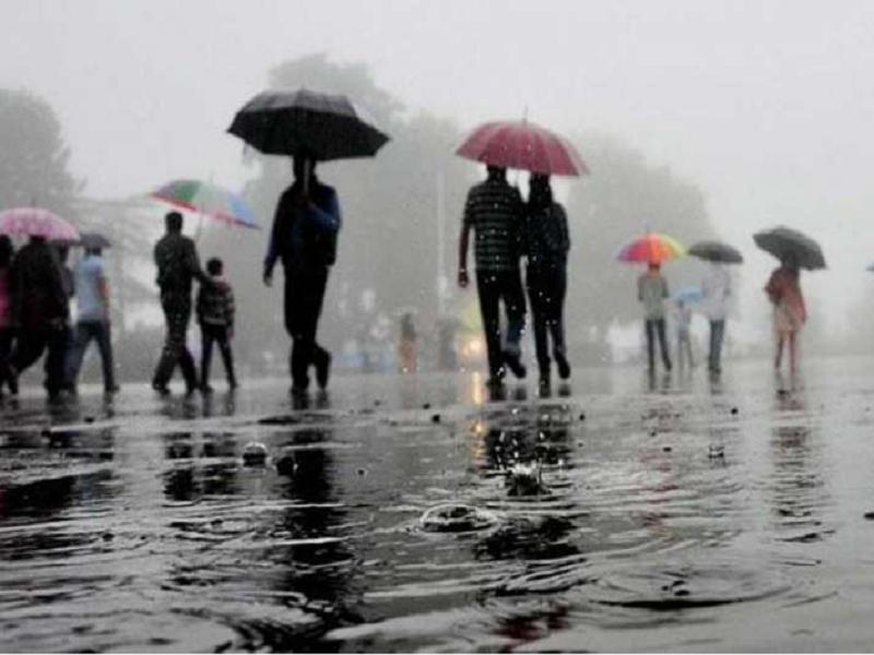 ফেব্রুয়ারির উত্তপ্ত তাপমাত্রা অতিক্রম করল ১৪ বছরের রেকর্ড, অন্যদিকে উত্তরবঙ্গে চলছে বৃষ্টিপাত (North Bengal Continues To Receive Rainfall)
