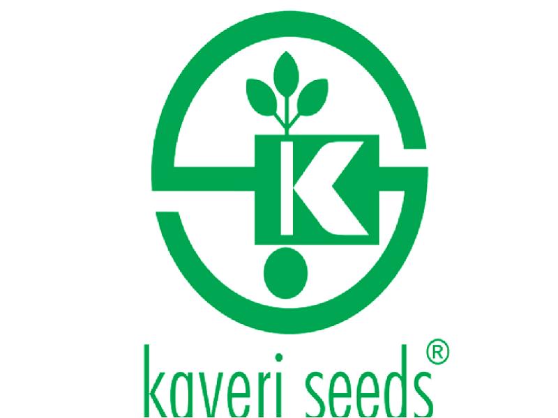 কাবেরী সীড- ১ লক্ষ একরেরও বেশী উত্পাদন, বিশ্বে প্রথম সংস্থা (Kaveri Seed )