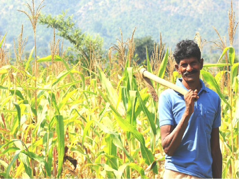 WB Farmer (Image Credit - Google)