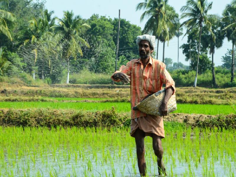 PMKMY - Scheme for farmers (Image Credit - Google)