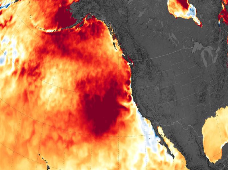 Heat Wave (Image Credit - Google)