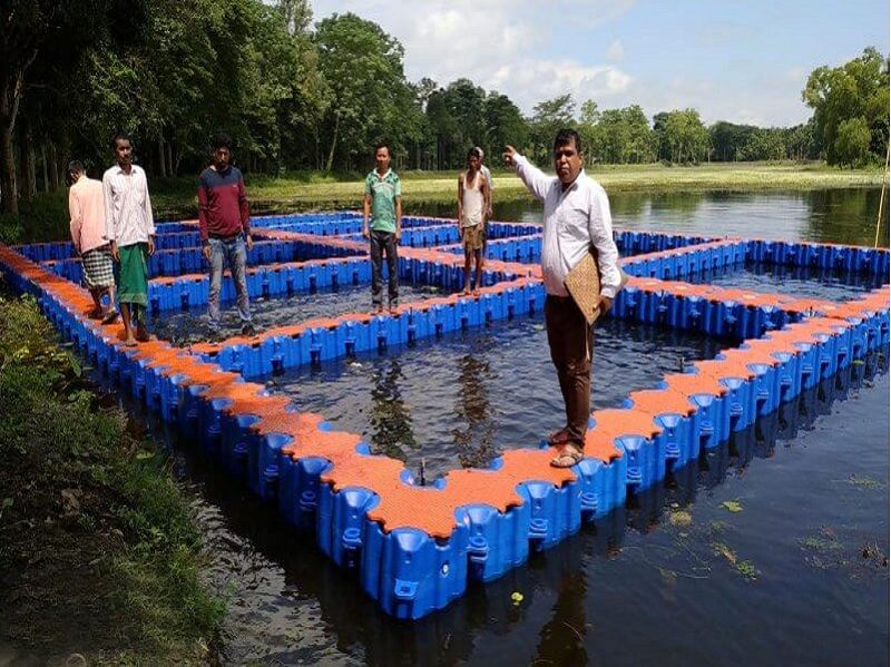 Fish farming in pond (Image Credit - Google)
